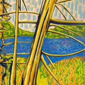 Little Long Pond No. 1: Acadia