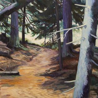 Upper Spruce