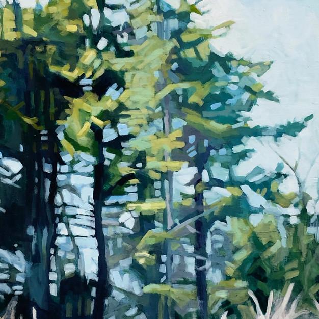 Shoreline Trees