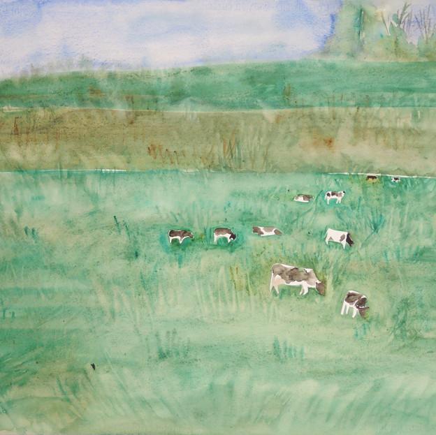 Green Fields, Beautiful Landscape, Herd in the Distance