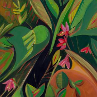 Isle au Haut Orchids