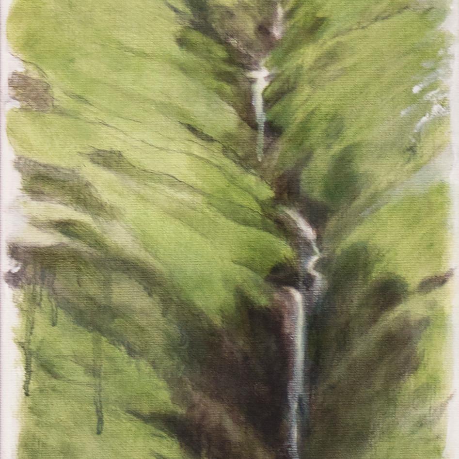 Anascaul Falls