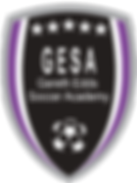 GESA_logo_black back_clipped_rev_1.png