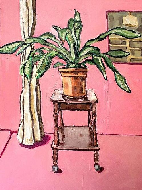 Plant by John Lloyd