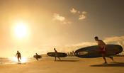 BREPC_Paddleboards_Sunset_1A.jpg
