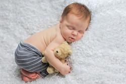 Danville Newborn Photographer