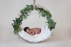 Roxboro NC Newborn Photography