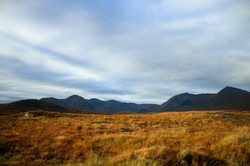 Barrens of Scotland