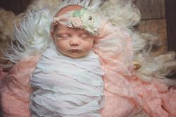 Roxboro Newborn Photography