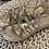 Thumbnail: Primadonna - Sommer Sandalen Gold