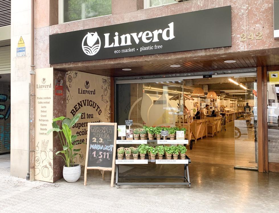Linverd_PLV1.jpg