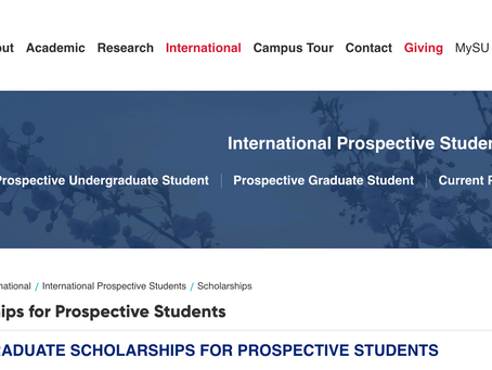Bourses de Licence pour étudiants internationaux à l'Université Sabancı
