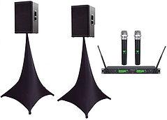 Speaker and mic.jpg