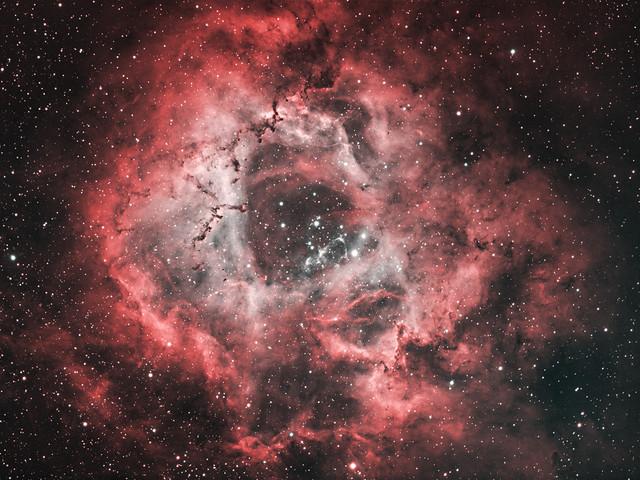 NGC 2237 - Nebulosa Rosetta