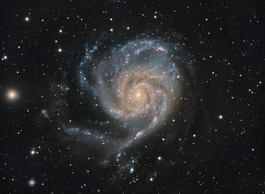 M101_220520_Gallery.jpg