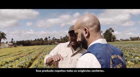 Campanha-video-02.mp4
