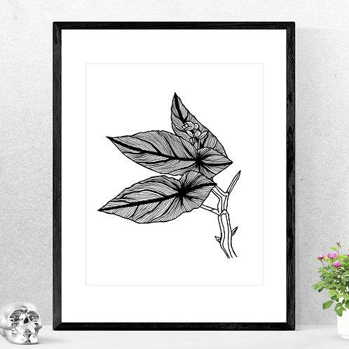 Textured Begonia Print