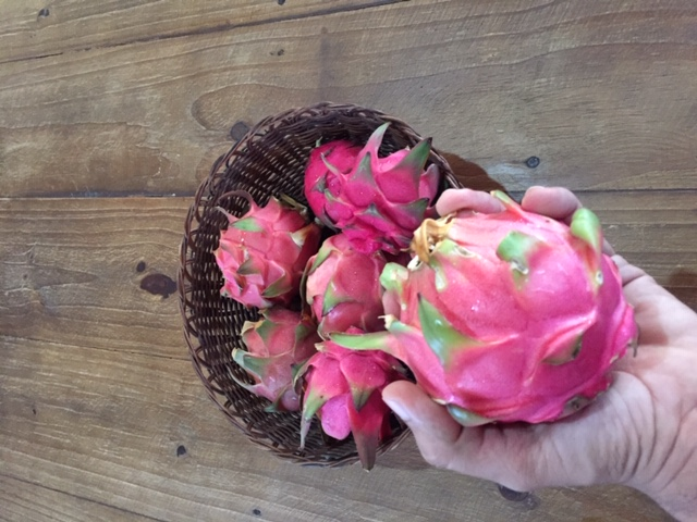 pitaya santa andre