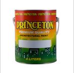 Princeton - Premium Quality Architectural Paint