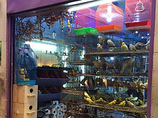 Pet Shops in Pasay City Metro Manila