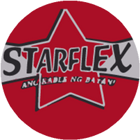 Starflex Electrical Wires in Manila