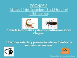 Zoonosis - Charla Informativa y de concientización de chagas - 12 de diciembre