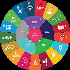 Sustainable Development Goals Wheel