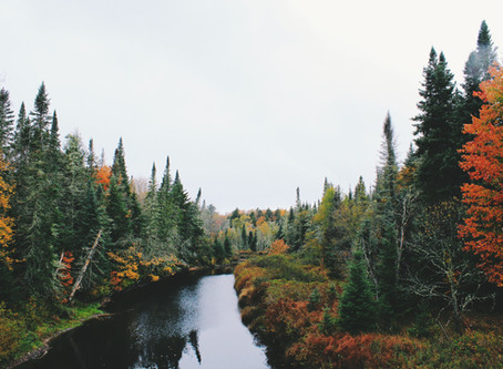 """""""How Fall Travel Can Lead to New Sales for Travel Agents"""" - travelagewest.com"""