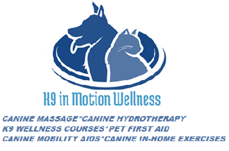 NEW LOGO K9 IN MOTION WELLNESS.png