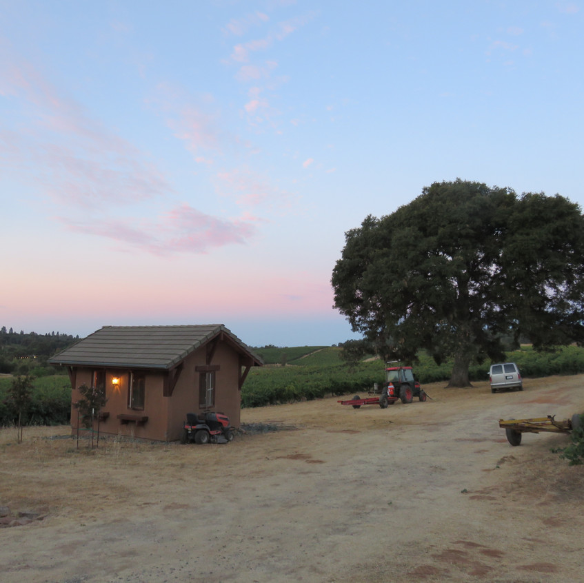 Oakmont Vineyard, Amador County