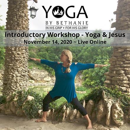 Online Introductory Workshop -Nov2020.pn