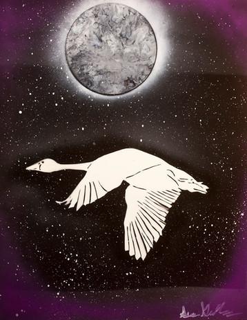 Arctic Goose