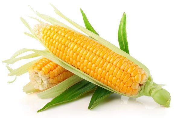 Corn-Eco-Filament-PLA.jpg