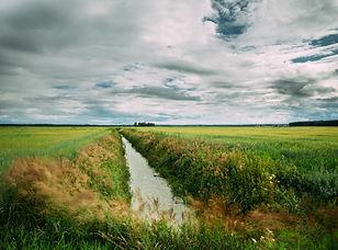 Systeme-de-drainage-72dpi.jpeg