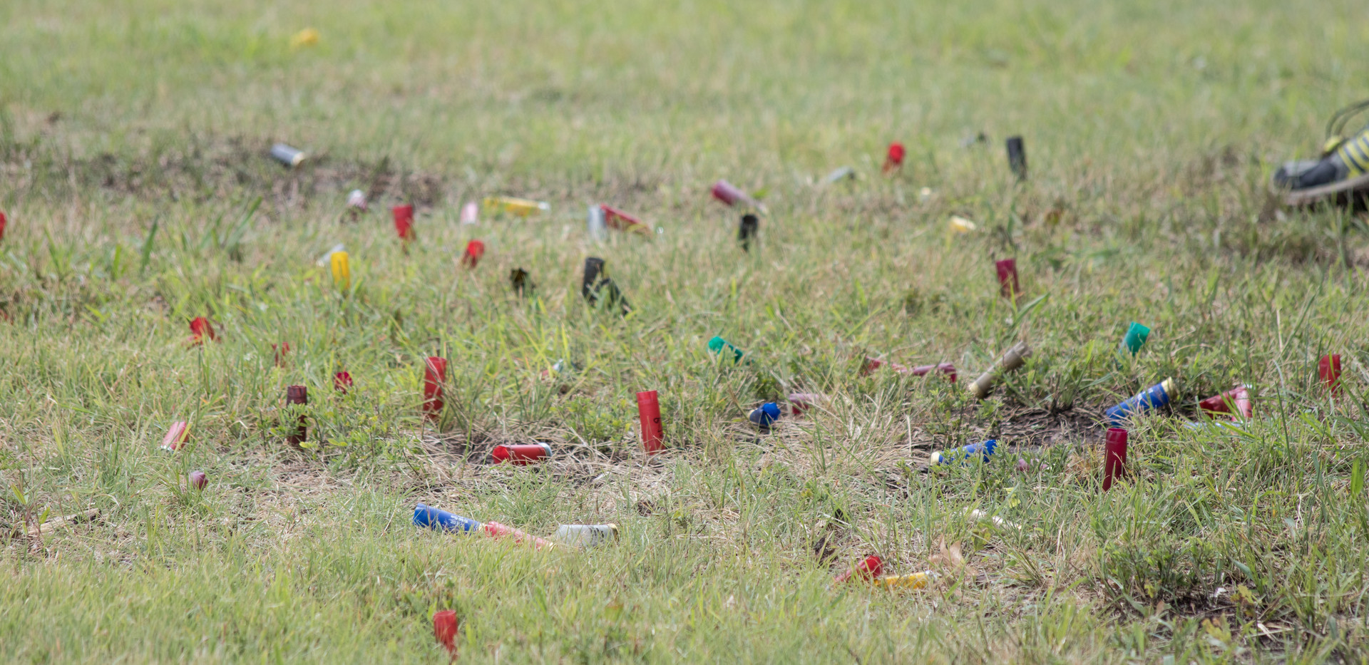 Oklahoma Wildlife-216.jpg