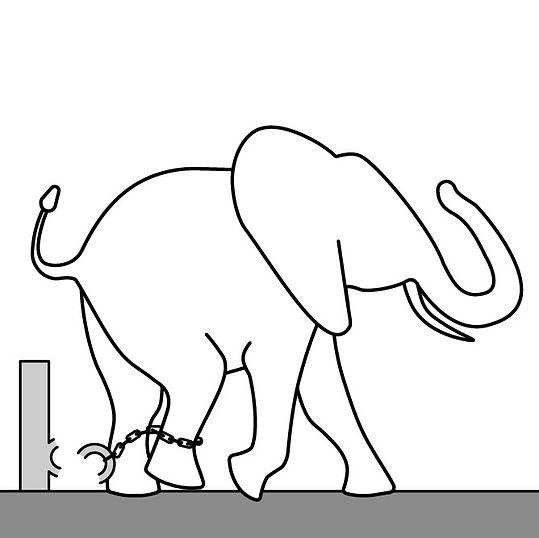 tavola_elefante.jpg
