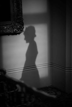Stunning shadow portrait of the bride