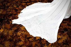 Brides dress in the Autumn leaves