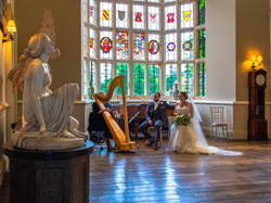 A harpist plays for the bride and groom