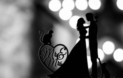 Black and white shot of the wedding cake topper