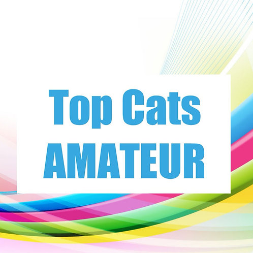 Top Cats Amateur