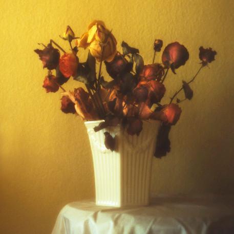 Torkade blommor i vas