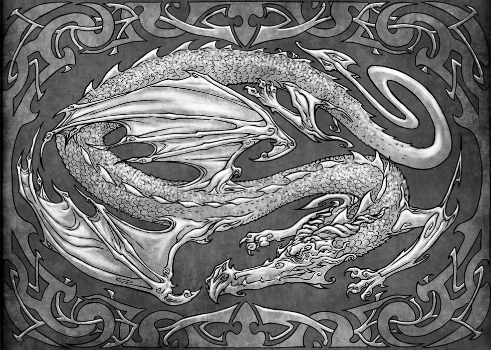 dragon nb 300 dpi grey site.jpg