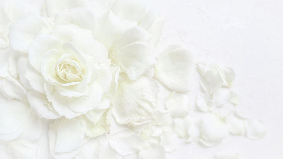 white roses background 1.JPG