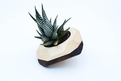 Tilted Geometric Wooden Planter