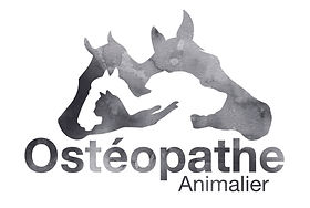 OSTHEOPATHE ANIMALIER LOGO CARTE DE VISITE