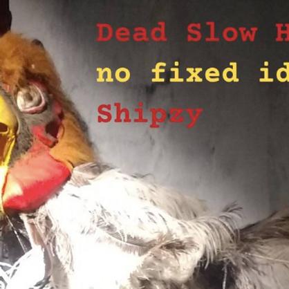 Dead Slow Hoot // no fixed idENTITY // Shipzy