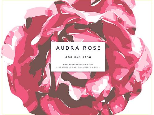 Audra Rose Salon $150 e-gift card