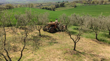The Farmerchef: An Italian Answer to Normality