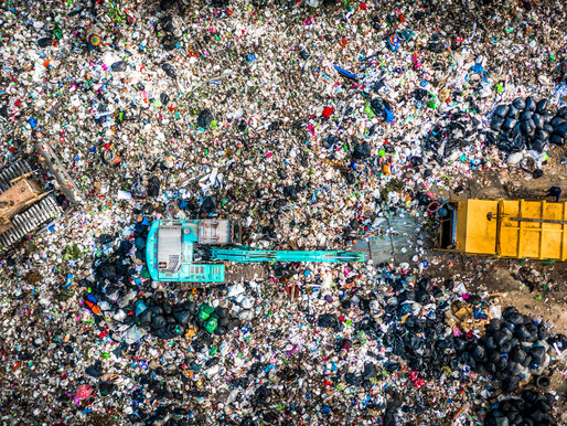 Circular Design-out waste in action - successful case study analysis